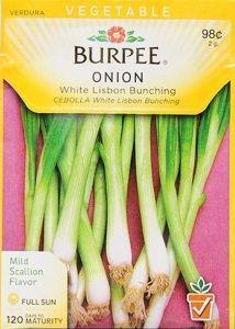 Seed packet for burpee onions. Top: Vegetable - burpee onion - white lisbon bunching - mild scallion glavor - full sun - 120 days to maturity